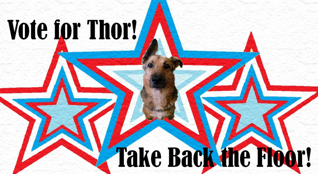 Vot for Thor Michaelson! Pawcifer of Justice!